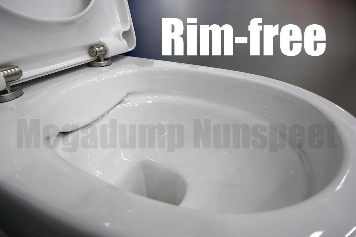 Geberit Hangend Toilet : Geberit compleet toilet met rim free wandcloset zonder spoelrand