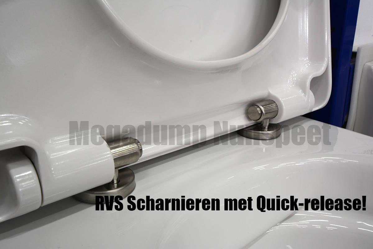 Inbouw Toilet Compleet : Geberit compleet toilet met rim free wandcloset zonder spoelrand